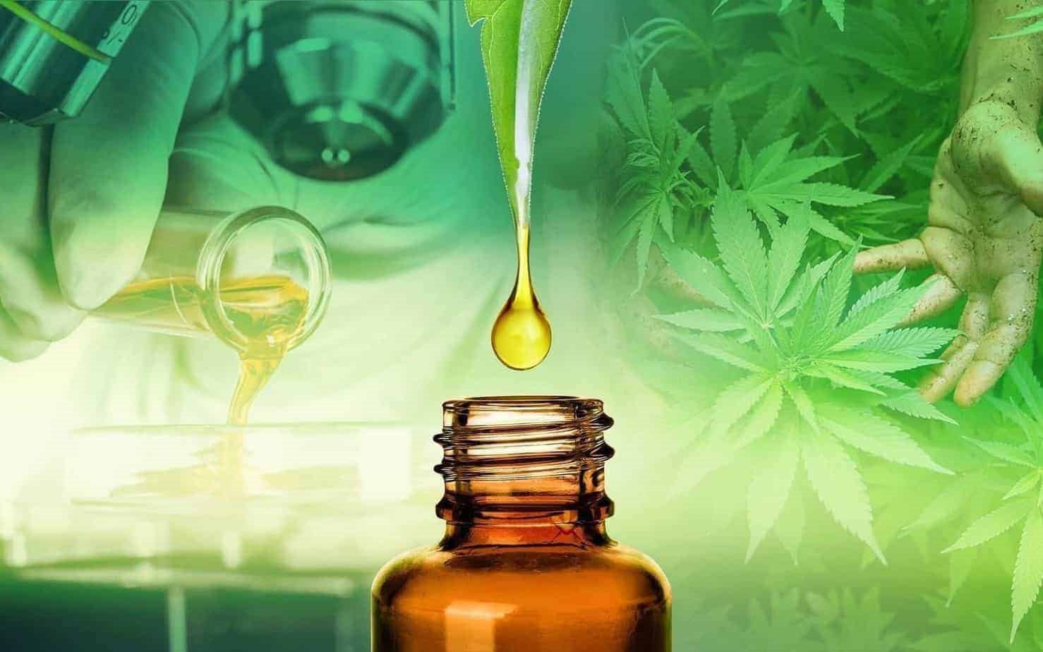Dispelling the Top 6 Myths Behind CBD Oils: How They are Helping Heal Mental Health and Increasing Daily Happiness (Part 1 of 2)