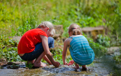 Summer Survival Guide for Parents of Extreme Children: Five Strategies to Enjoy Your Summer Break Together