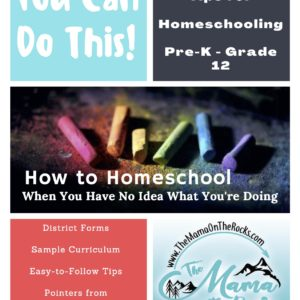 How to Homeschool When You Have No Idea What You're Doing: Tips, Tricks, and Templates to Get You Started | The Mama On The Rocks