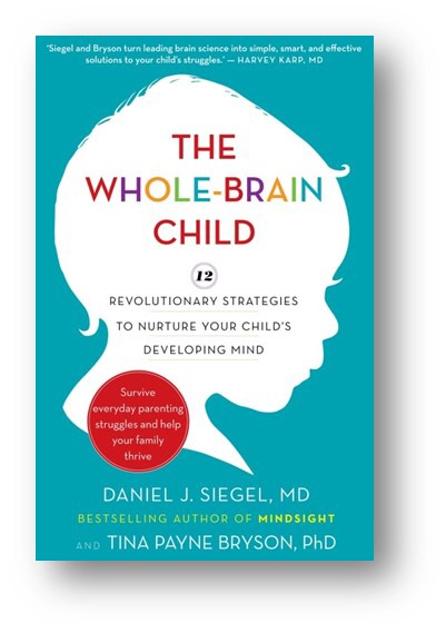 The Whole-Brain Child by Daniel J. Siegel   The Mama On The Rocks
